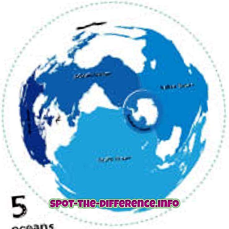 verschil tussen: Verschil tussen Oceaan en Golf