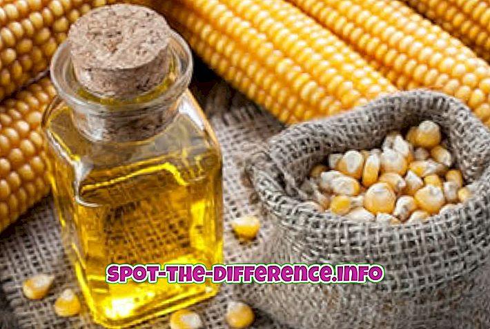 Soijaöljyn ja maissinöljyn välinen ero