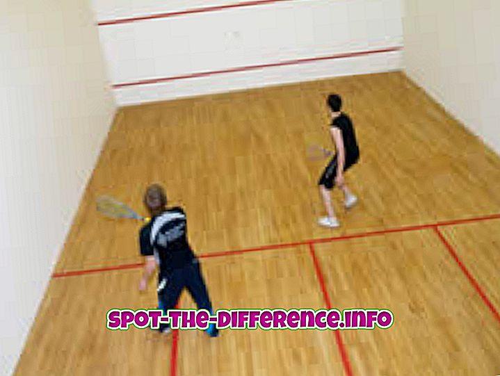 atšķirība starp: Atšķirība starp skvošs un Racquetball