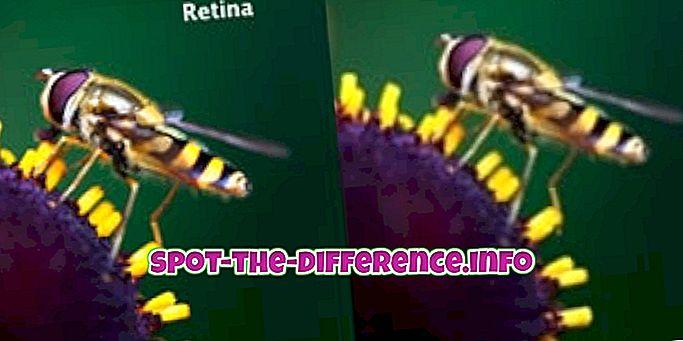 sự khác biệt giữa: Sự khác biệt giữa màn hình Retina và màn hình thông thường