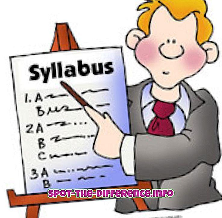 verschil tussen: Verschil tussen Syllabus en Curriculum