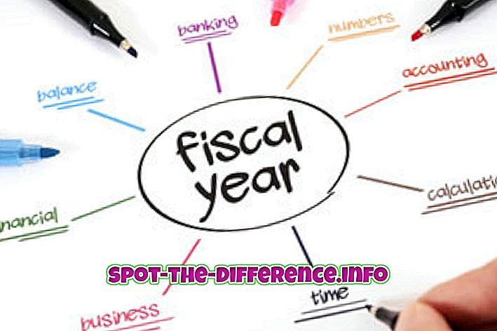 διαφορά μεταξύ: Διαφορά μεταξύ του οικονομικού έτους και του οικονομικού έτους