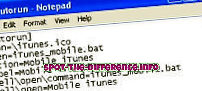 rozdiel medzi: Rozdiel medzi Autoplay a Autorun