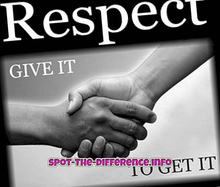 Unterschied zwischen: Unterschied zwischen Respekt und Ehre
