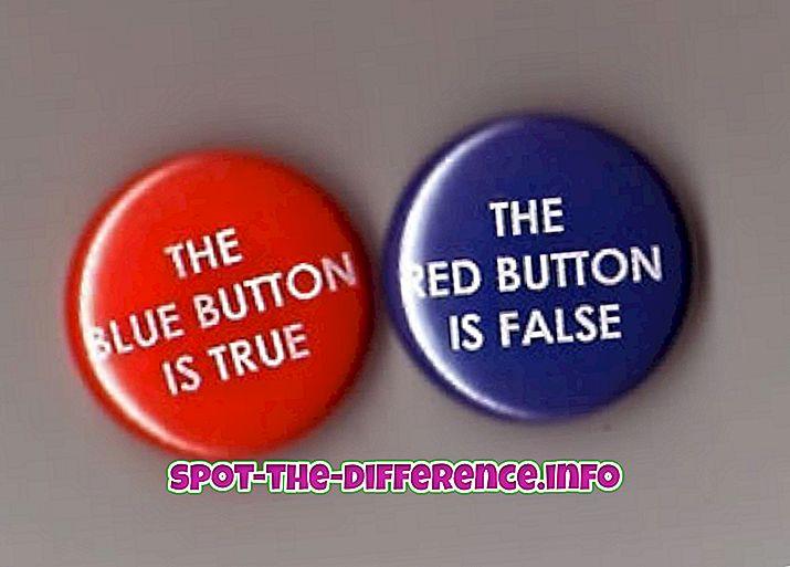 차이점: 역설과 아이러니의 차이점