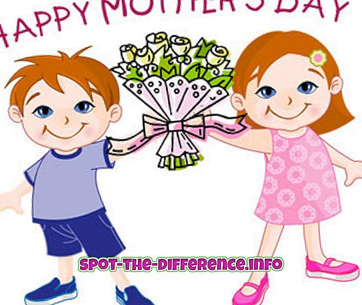 diferencia entre: Diferencia entre el día de la madre y el día del padre