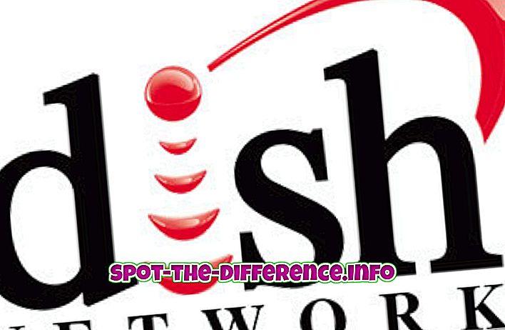Unterschied zwischen: Unterschied zwischen Dish Network und DirectTV