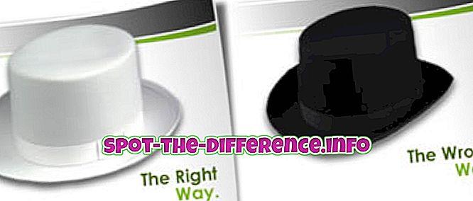 razlika između: Razlika između bijelog šešira i crnog šešira SEO