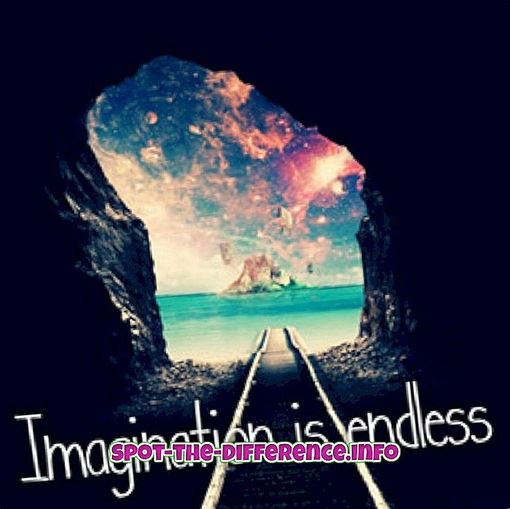 perbedaan antara: Perbedaan antara Imajinasi dan Fantasi