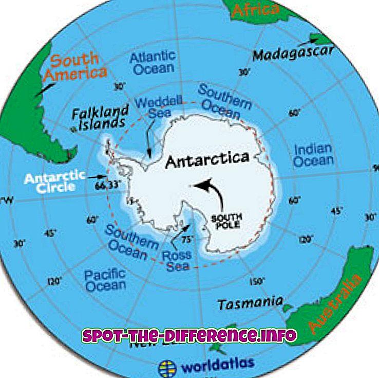 vahe: Erinevus Antarktika ja Arktika vahel