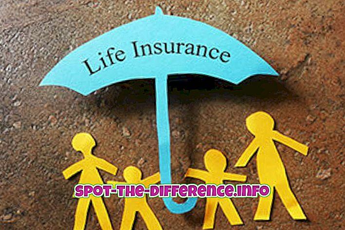Unterschied zwischen: Unterschied zwischen Lebensversicherungen und allgemeinen Versicherungen