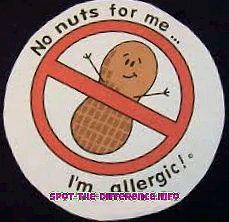 Разлика између алергије на храну и неподношења хране