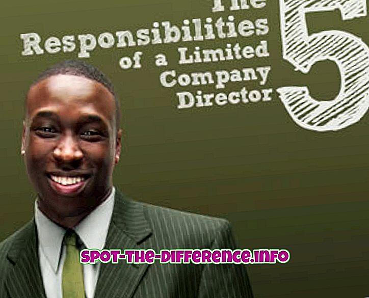 Perbedaan antara Direktur, MD dan CEO