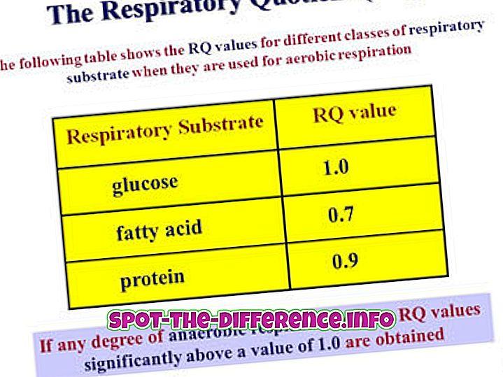 atšķirība starp: Atšķirība starp elpošanas apmaiņas attiecību (RER) un elpošanas kvantitatīvu (RQ)