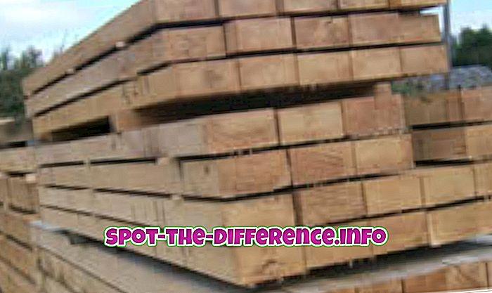 Unterschied zwischen Hartholz und Nadelholz