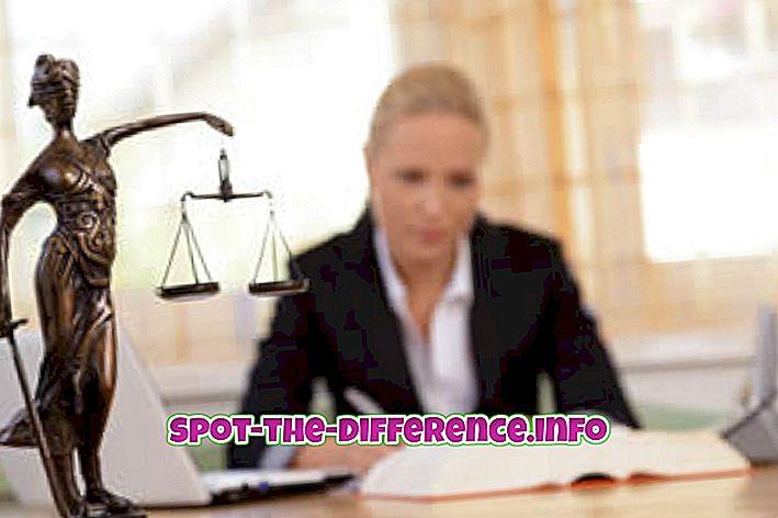 Forskel mellem advokat og advokat