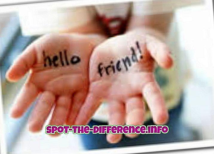 perbedaan antara: Perbedaan antara Teman dan Sahabat Terbaik