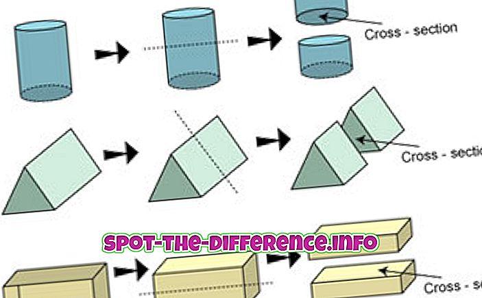 vahe: Erinevus sektsiooni ja ristlõike vahel