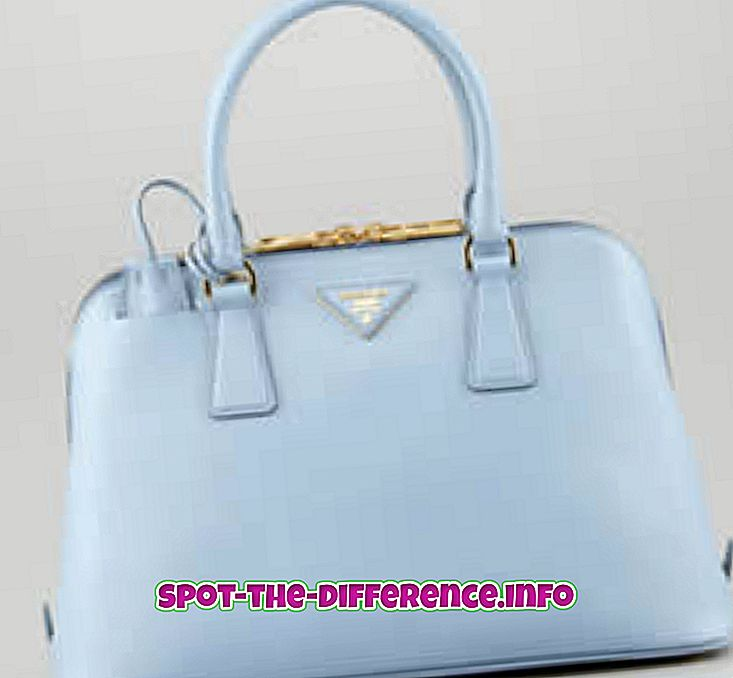 atšķirība starp: Starpība starp Prada un Gucci
