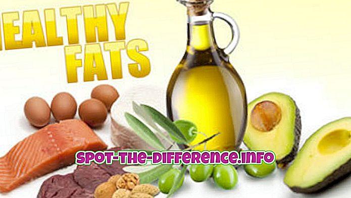 との差: 脂肪とトランス脂肪の違い