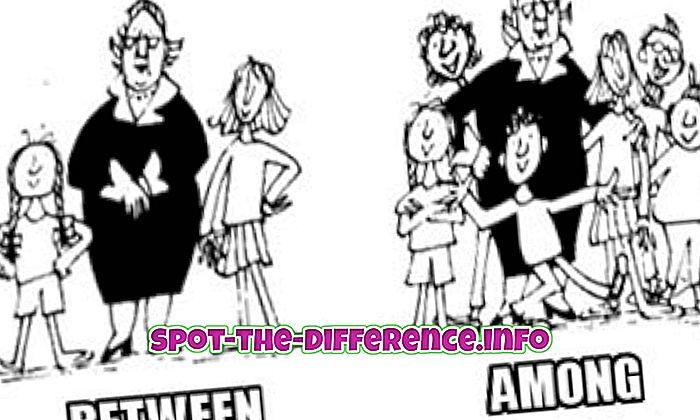 Különbség a között és között