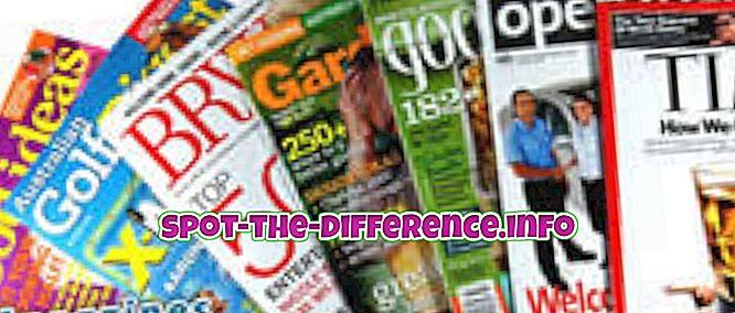 rozdíl mezi: Rozdíl mezi deníkem a časopisem