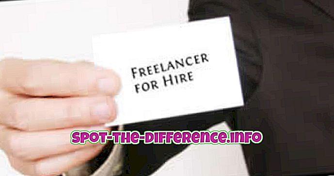Разлика између слободног професора, консултанта и предузетника
