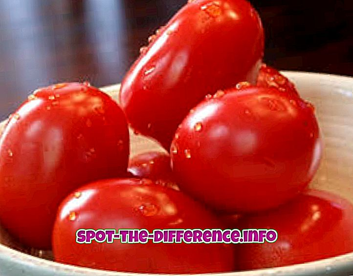 Rozdíl mezi rajčaty a cherry rajčaty