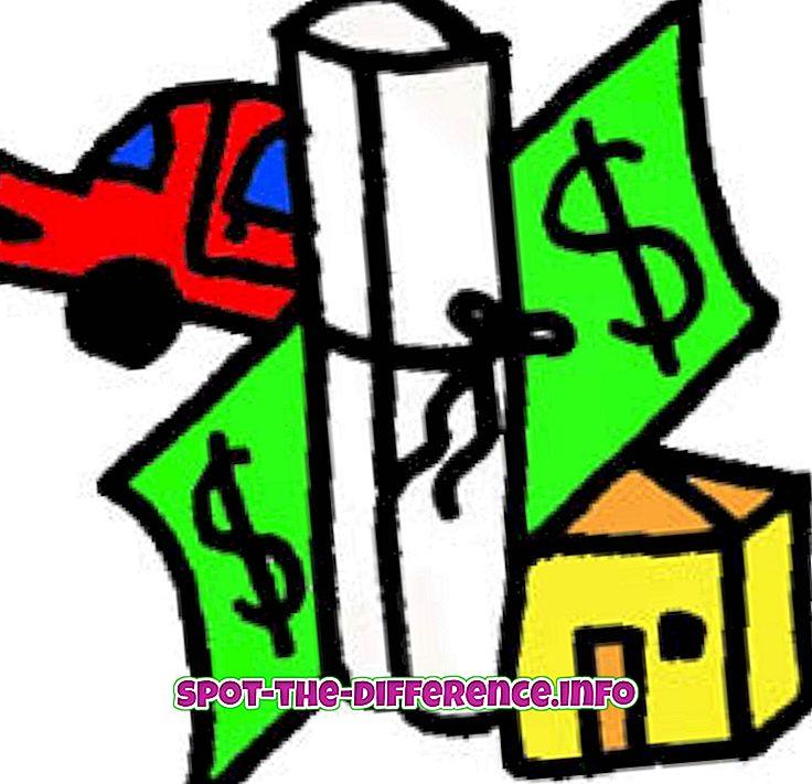 차이점: 자산과 부채의 차이