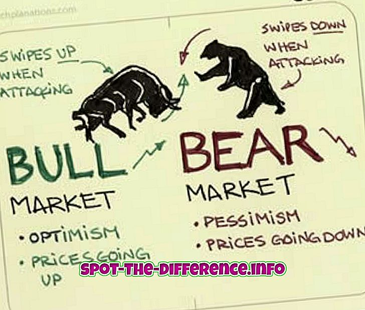 forskel mellem: Forskel mellem Bear og Bull Markets