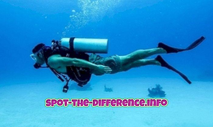 rozdiel medzi: Rozdiel medzi potápaním a šnorchlovaním