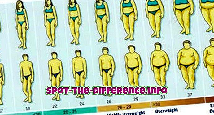 Razlika između BMI i BIA