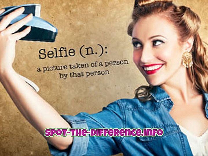 forskel mellem: Forskel mellem Selfie og Groupie