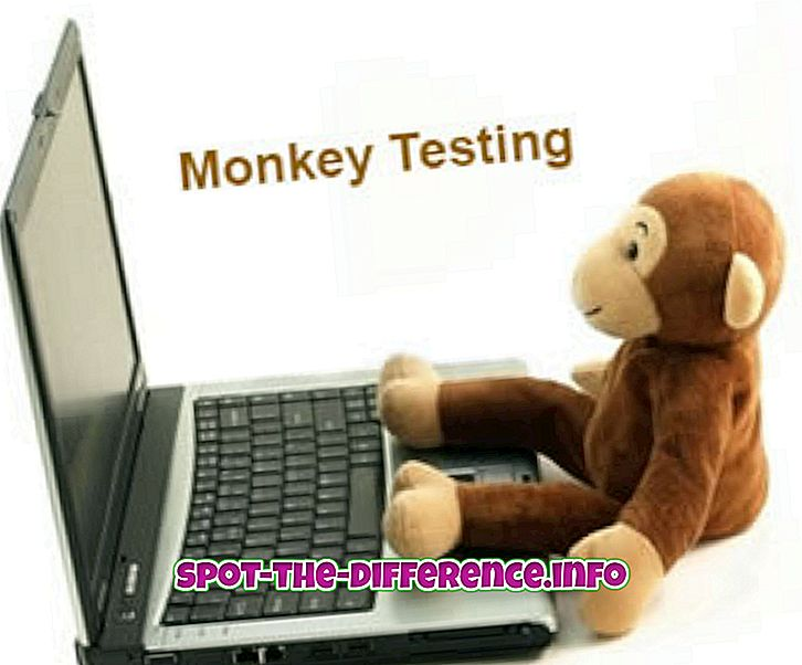 differenza tra: Differenza tra Monkey and Gorilla Testing