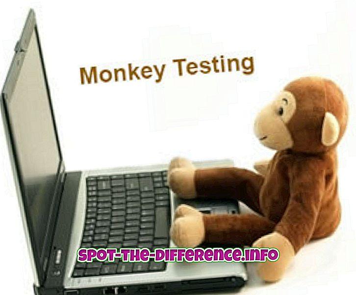 Unterschied zwischen: Unterschied zwischen Affen- und Gorilla-Tests