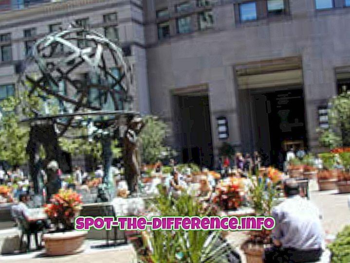 vahe: Erinevus Plaza ja Piazza vahel