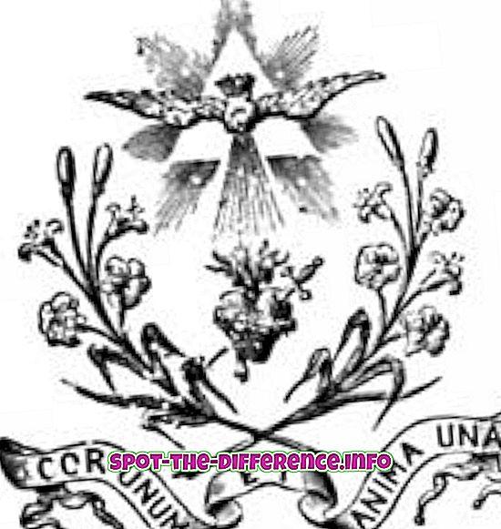 разлика између: Разлика између Светог Духа и Светог Духа