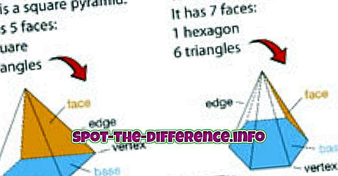 разница между: Разница между пирамидами и призмами