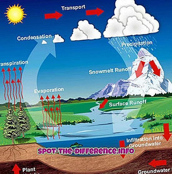 Verschil tussen watercyclus en hydrologische cyclus