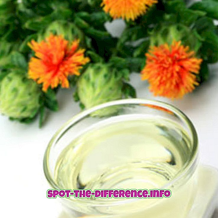 Perbedaan antara Safflower dan Grape Seed Oil
