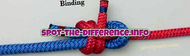 diferencia entre: Diferencia entre vinculación estática y dinámica