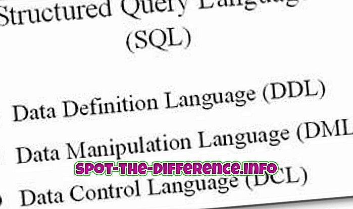 Differenza tra DDL e DML in forma tabulare