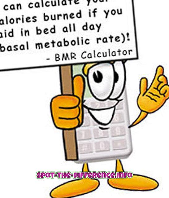 pierdere în greutate bmr tdee mercy me conduceți scăderea în greutate cântăreață
