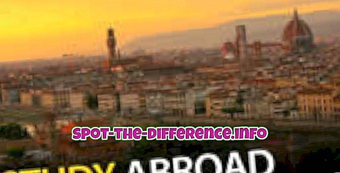 rozdíl mezi: Rozdíl mezi zahraničí a zahraničí