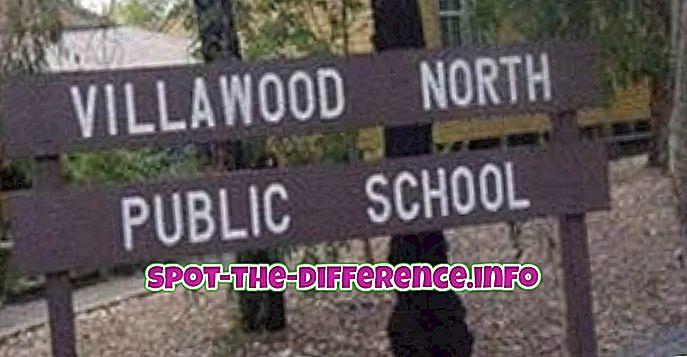 διαφορά μεταξύ: Διαφορές μεταξύ δημοσίων, ιδιωτικών και σχολών χαρτών