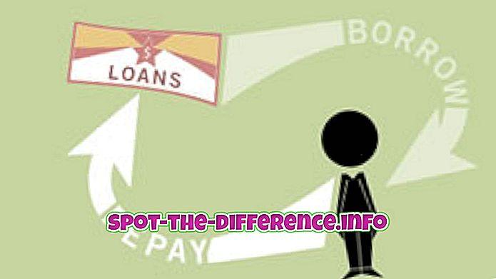 Forskel mellem pant, hypotektering og realkreditlån