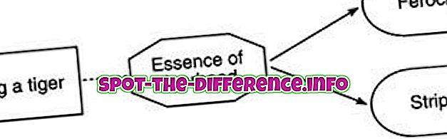 Rozdíl mezi esencialismem a relativismem