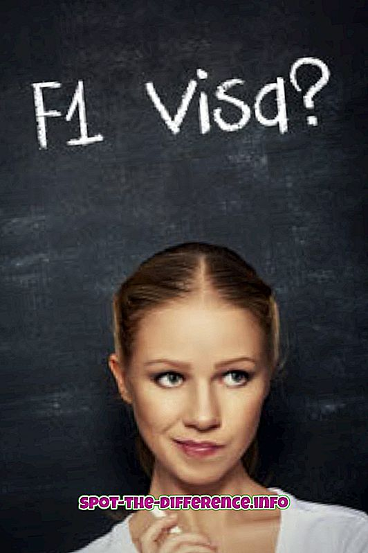 perbedaan antara: Perbedaan antara Visa F1 dan J1