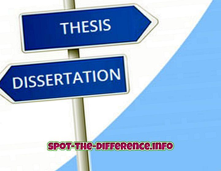 Διαφορά μεταξύ διδακτορικής διατριβής και διατριβής