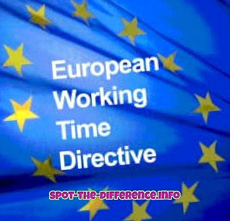 Forskel mellem direktiv og politik